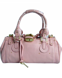 chloe_choleSatchel031